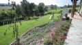 Trávníky, zahrady, živé ploty